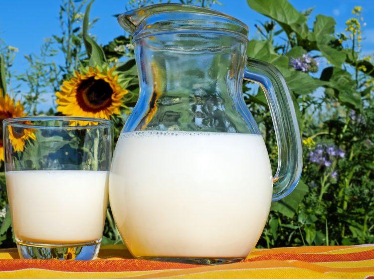 Dünya Çiğ Süt Fiyatları