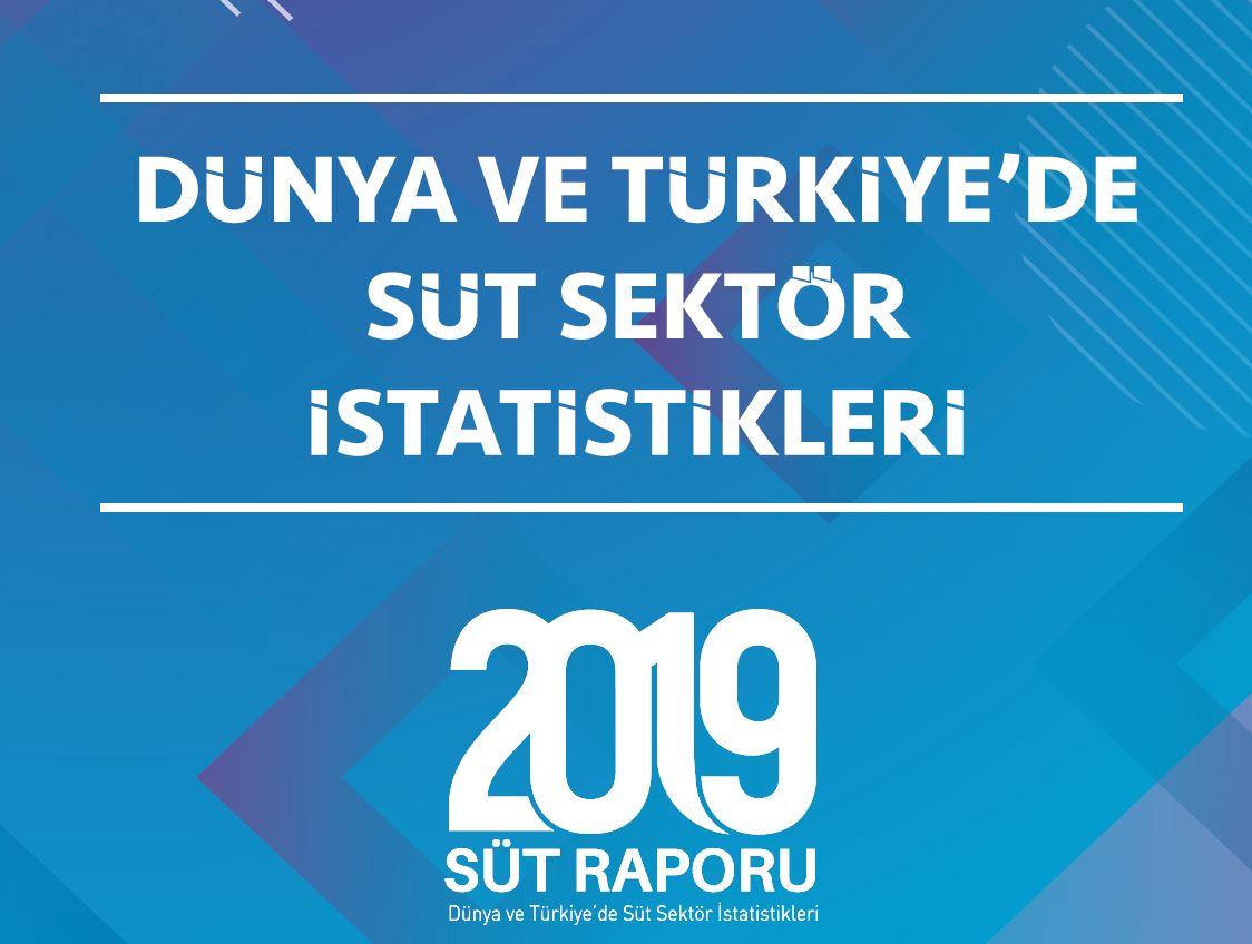 2019_rapor_kapak